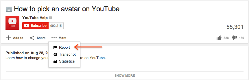 YouTube video flagging options